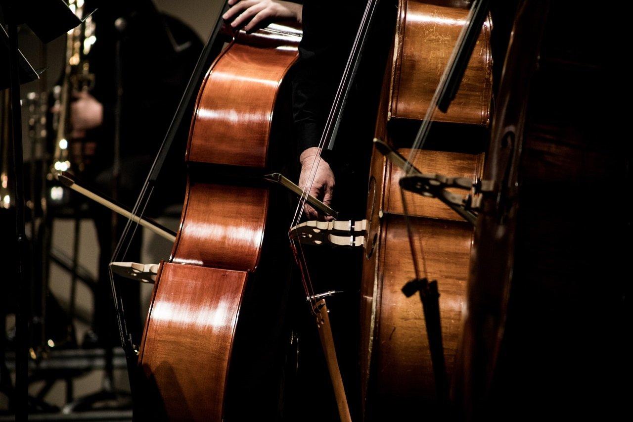 bayrische philharmonie
