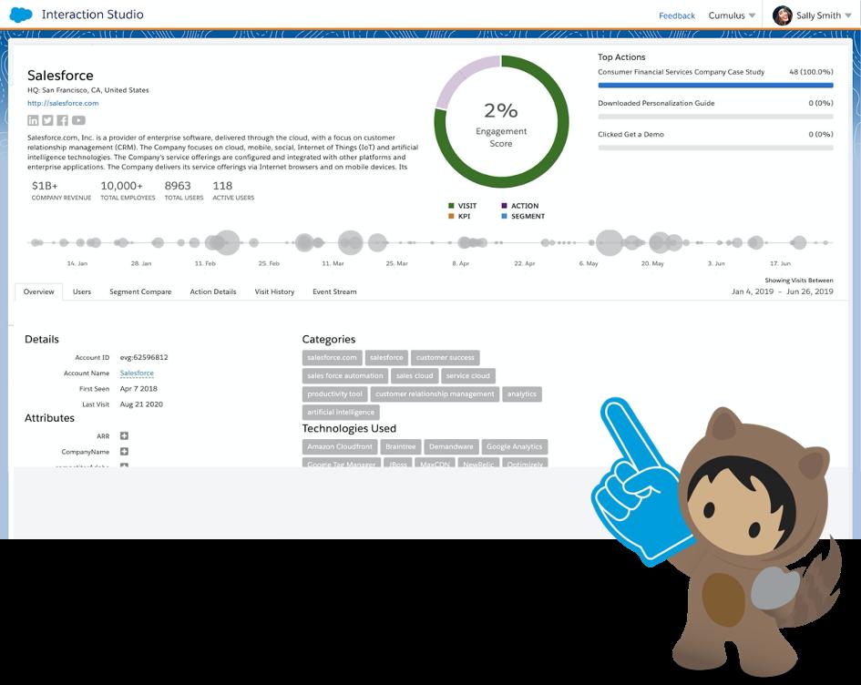 Salesforce Interaction Studio B2B-Erkennung